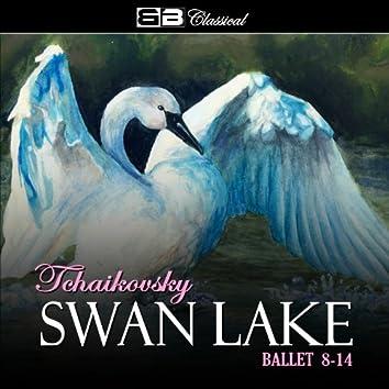 Tchaikovsky Swan Lake Ballet 8-14