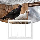 DAUERHAFT Jaulas Trampa en T Buena Estabilidad 3 Tipos para jaulas(30 * 26cm)