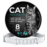 CRUZYO Flea and Tick Prevention for Cats - One Size Fits All - Waterproof Best Protection and Adjustable - 8 Month Essential Natural Herbal Oil - Gray