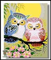 ARTomo【アトモ】パズル油絵『フレーム付き』数字 油画 DIY 塗り絵 本格的な油絵が誰でも簡単に楽しく描ける 40x50cm (フクロウのデート)