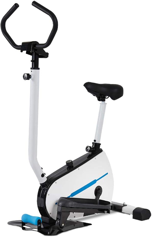 LOO LA Crosstrainer Bike-Fitness-Training Elliptisches 2-In1-Cardio-Abnehm-Trainingsgert mit Sitzpuls-Herzfrequenzsensoren,B