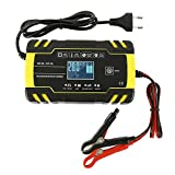 willkey 12V /24V Chargeur Batterie de Voiture 8A,Chargeur et mainteneur de Batterie des véhicules pour Batterie plomp Acid 2AH-150AH avec l'écran à Cristaux liquides,110V-240V AC pour Voiture Moto