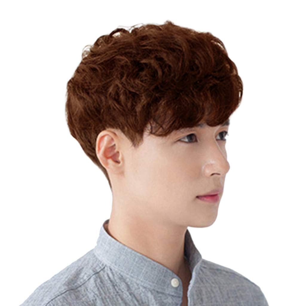 Clearance Bob Wig For Men Short Curly Wavy Full Wig Synthetic Fiber Hair Korea Style Cosplay Party Wig B Amazon Com Grocery Gourmet Food
