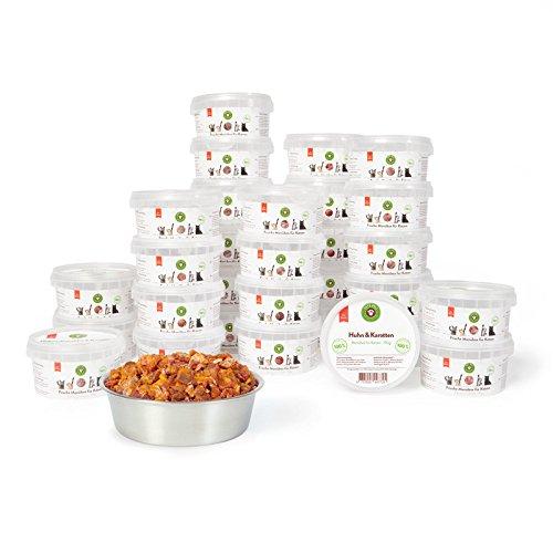 Nassfutter für Hunde | Pferd mit Kartoffeln und Distelöl | 2,4 kg - 6er-Pack