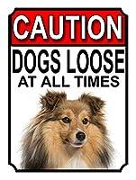 アルミメタルノベルティ危険サインイン、注意犬は常に緩いメタルゲートサインシェットランドシープドッグ、家の装飾のためのノベルティメタルサイン男性女性の洞窟のためのブリキサイン