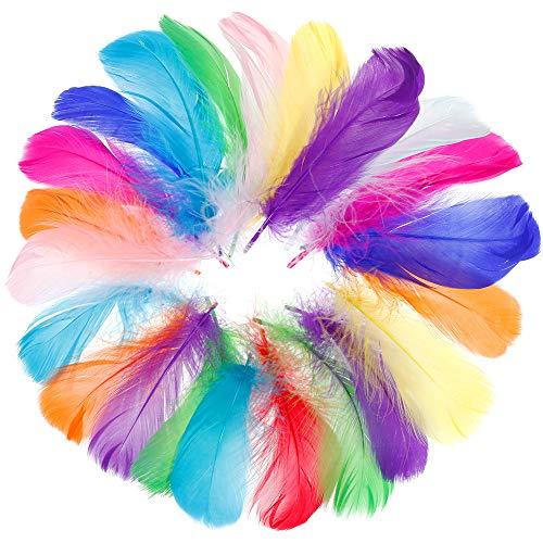 Faburo 500 Pezzi Piume Colorate,Bella di Alta qualita' del Piuma,per Le Feste di Compleanno e Matrimonio, DIY Dream Catchers Orecchini Craft Centrotavola
