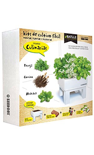 Huerto Urbano - Seed Box Culinarias - Batlle
