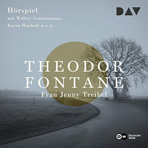 Frau Jenny Treibel audiobook cover art