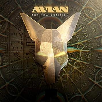 Avian (Radio)