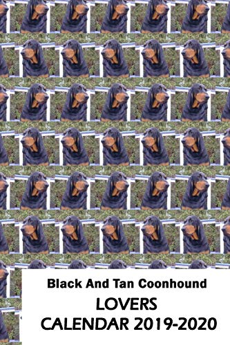 Black And Tan Coonhound Lovers Calendar 2019-2020