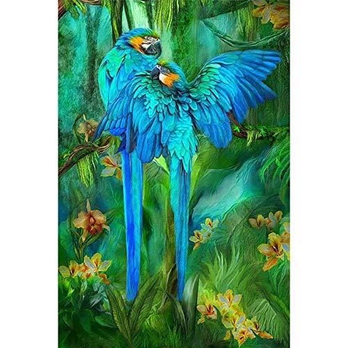 Caihoyu 5D DIY Diamantmalerei Papagei Waldvogel Kreuzstich Harz Volldiamantmalerei Vögel 3D Bild Wand Leinwand Dekor Vollrundbohrer Kein Rahmen 12X16