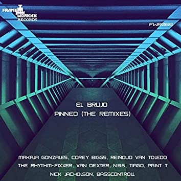 Pinned (The Remixes)