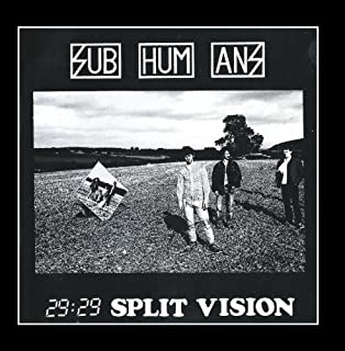 29 : 29 Split Vision by Subhumans