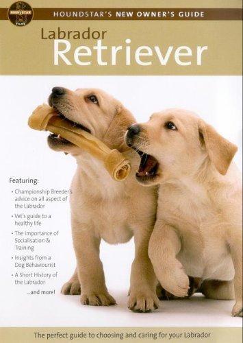 Houndstar's New Owner's Guide To The Labrador Retriever [DVD] [Reino Unido]