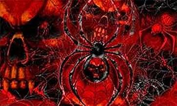 U24 vlag piraat doodskop Spider spin 90 x 150 cm