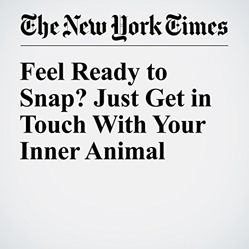 Feel Ready to Snap? Just Get in Touch With Your Inner Animal audiobook cover art