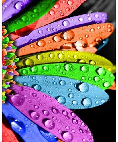 LHZBB DIY 5D Kit de Pintura de Diamante para Adultos Niños Artes y Manualidades Flores de Arco Iris Pintura Punto de Cruz Bordado de Diamantes Mosaico Decoración Europea para el hogar -40x50cm