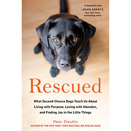 Rescued audiobook cover art
