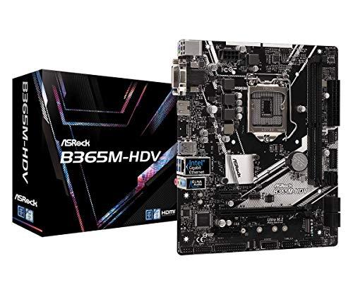 Asrock Intel B365 Chipset Scheda madre B365M-HDV