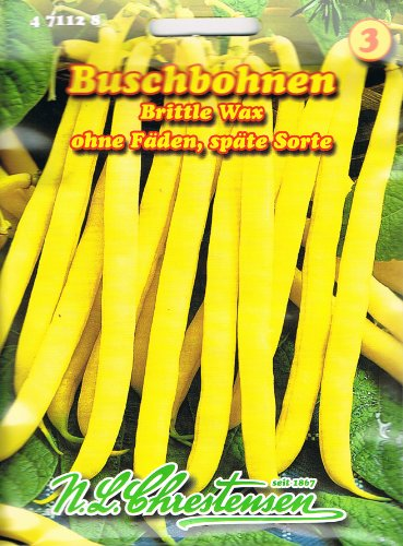 Buschbohne Brittle Wax (Wachs Beste von Allen) (Portion)