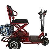 WLY Triciclo Plegable eléctrica 48v20A Scooter de Doble Unidad de 700W 50...