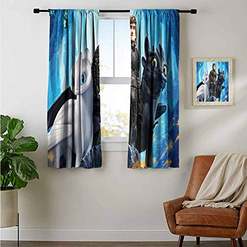 ZhiHdecor Bedroom Curtains 2 Panel Sets Hiccup How to Train Your Dragon Into The Hidden World 5K 77 Noise Reducing Curtain