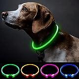 Collar de perro LED con luz para perros de seguridad personalizado con USB recargable Super brillante collar de perro intermitente 4 colores para perros pequeños, medianos y grandes