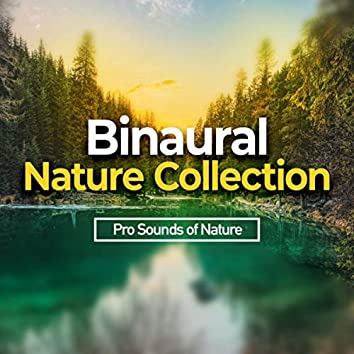 Binaural Nature Collection
