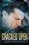 Cracked Open - Gefährliche Spaltung (Mindjack #5)