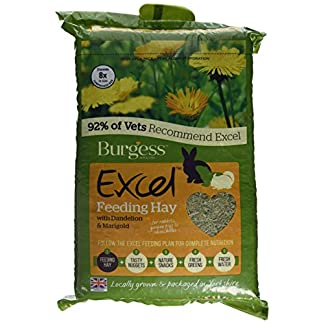 Burgess Excel Feeding Hay with Dandelion and Marigold 1kg (Pack of 3) 18