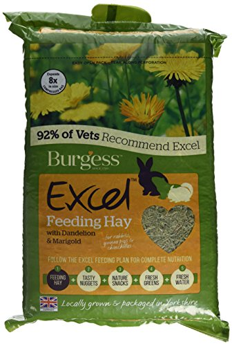 Burgess Excel Feeding Hay with Dandelion and Marigold 1kg (Pack of 3) 1