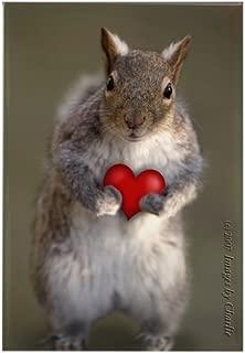CafePress Squirrel Lover's Rectangle Magnet, 2