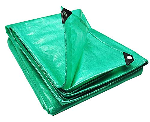 PAMEX - Toldo reforzado 90 gramos (3x4m, Verde)