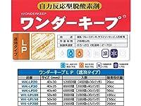 脱酸素剤 【ワンダーキープWK-LP30】速効タイプ|1ケース8000個(200個x40袋)|サイズ40x35mm