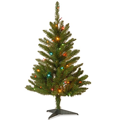 National Tree Company Pre-lit Artificial Mini Christmas Tree Includes Multi-Color Lights and Stand, Kingswood Fir Slim - 3 ft, Green