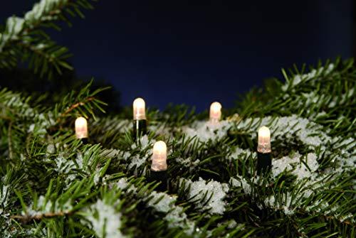 Hellum 555035 LED Lichterkette 80 LEDs warmweiß verlängerbar / 9,4 m/erweiterbar bis 1000 LEDs/innen & außen/Zuleitung 1,5 m grün