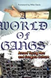 A World of Gangs: Armed Young Men and Gangsta Culture (Globalization and Community, Band 14) - John M. M. Hagedorn