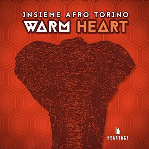 Insieme Afro Torino