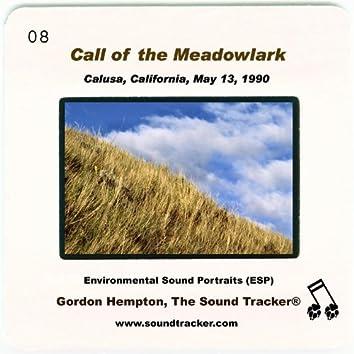 Call of the Meadowlark