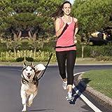 Correa manos libres para perros Adogo, cuerda extensible ajustable para la cintura que absorbe los golpes, para correr y caminar