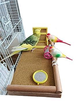 Accessoire de cage d'étagère de perche de plate-forme d'oiseau! Périmètre en bois à chevilles en hêtre! Pour calopsittes, perruches, pinsons, canaris! Solide, construit pour durer! Excellent cadeau!