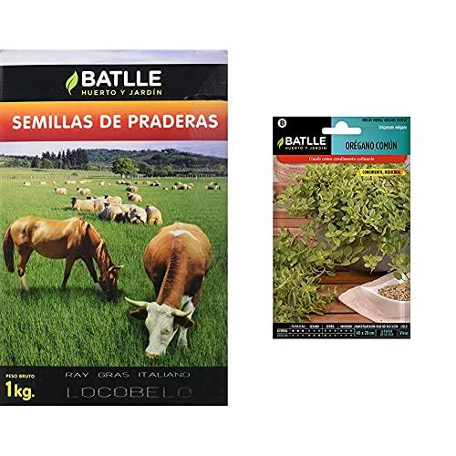 Semillas Batlle Semillas De Césped R.G. Italiano Certificado 1Kg + Semillas Aromáticas Orégano Común