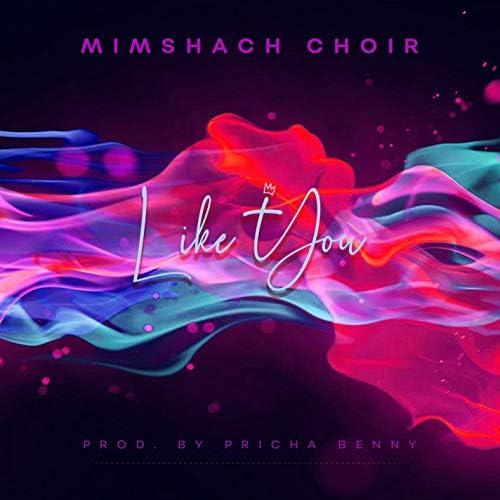 Mimshach Choir
