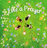 Like A Prayer: A Story for Being Amazing (English Edition)