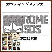 【②】ROME SDS ローム カッティング ステッカー (銀, 20)