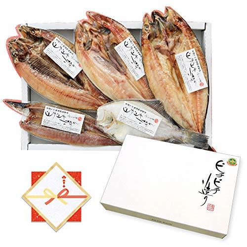 のし ギフト グルメ 干物 北海道産 ほっけ さんま かれい にしん さば 5種 北国からの贈り物