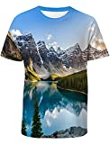 Casual 3D Printed T-Shirt Canada Banff National Park Landscape Polyester Short Sleeve Tops for Men S