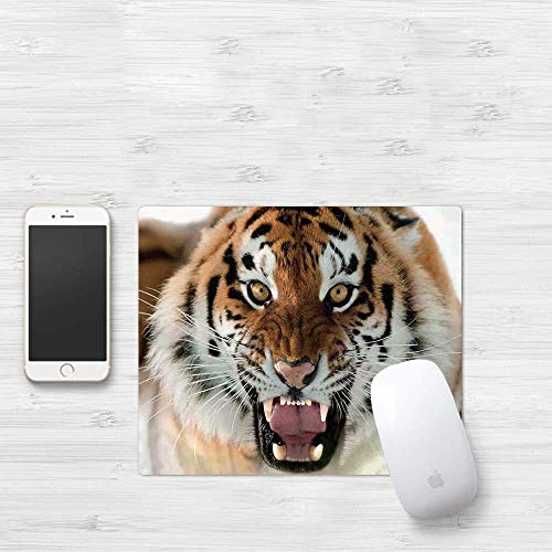 Gaming Mouse Pad, Safari Decor, The Siberian Tiger Roar Teeth Golden Eyes Stripes Whiskers Attack Predator white background, Thick Waterproof Mouse Mat Gaming Functional Antidérapant Functional Rubber