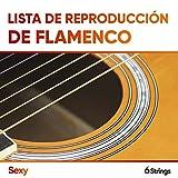 Lista de Reproducción de Flamenco Sexy para Relajarse
