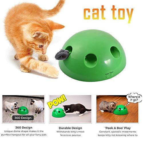 Katzenspielzeug mit Maus Chaser, Tierspielzeug Spielen Sie Katzenspielzeug, elektrisches, automatisches 360-Grad-Tease-Katzenspielzeug, Heimtierkatzenspielzeug für Katzen und Hunde (Grün)